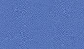 Phoenix Bluebell